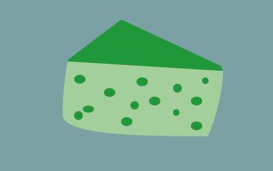 Bio Bodenseekäse